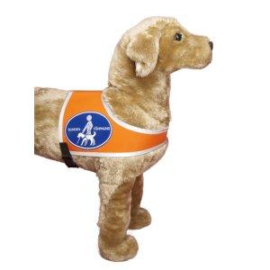 """Recognition vest """"Blindenführhund"""""""