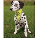 Safer Life safety neckerchiefs