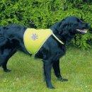 Safer Life safety vests