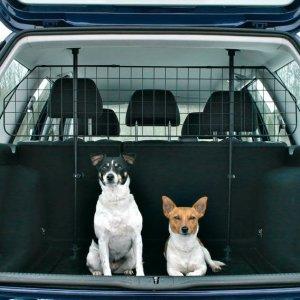 Car safety grid