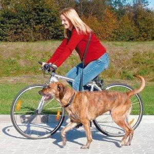 Fahrrad- und Joggingleine