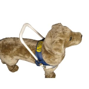 Support harness for companion and therapy dogs