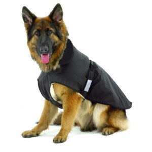 Dog Coat Outdoor 2in1, Length 26 cm