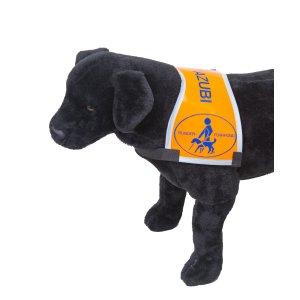 Welpenkenndecke für werdende Blindenführhunde