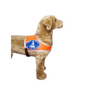 """Recognition vest """"Blindenführhund in Freizeit"""""""
