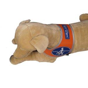 """Addition labeling for Recognition vest """"Blindenführhund"""""""