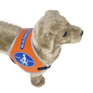 """Recognition vest Typ II """"Blindenführhund - In Ausbildung"""""""