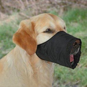 Muzzles, Nylon